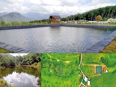 BTE's large-scale rainwater harvesting facility